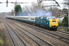 "55009 Deltic ""Alycidon"" on 1Z29 York to Liverpool Lime Street (Powerhaul70Pey) Tags: 55009 alycidon euxton york liverpool lime street pathfinders deltic freight train locomotive railway 1z29"