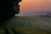 Ouvertüre (Rita Eberle-Wessner) Tags: sonnenaufgang sunrise morning morgen feld hafer gerste barley oat sonne sun landschaft landscape himmel agriculture landwirtschaft hügel hills berge tal dawn odenwald ouvertüre reh deer