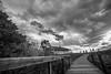 DSC00981 (Damir Govorcin Photography) Tags: walking bridge clouds watsons bay sydney wide angle zeiss 1635mm sony a7rii blackwhite monochrome leading lines