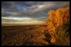 Otago Glow (Sarah Fraser63) Tags: sunset newzealand otago coast cloud sky sand water coastline nzsunset southisland