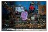 BOWIE & BIRDS FOR BOWIE`S BIRTHDAY (StockCarPete) Tags: bowie davidbowie thedame window shopfront birds owl shopwindow exshop newcross brownleafs