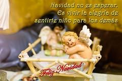 2017 Felicitacion Navidad_4 (Álvarez Bonilla) Tags: navidad natività nadal nativity christmas angeli ángeles angels pesebre crib presepe merry