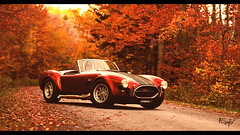 Autumn (at1503) Tags: bokeh blur leaves fallenleaves trees vermont usa red yellow orange autumn autumncolours colours shelby cobra light dark shadows green trail granturismo granturismosport digitalmotorsport digitalphotography ps4 racinggame racing reflections