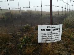 IMG_20180101_133234.jpg (robertpeckyno) Tags: tongariro newzealand volcano mountdoom tongarirocrossing ngauruhoe