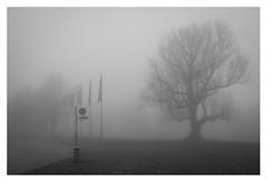 L1130555 (Knipser_Berk) Tags: stuttgart schloss solitude leica nebel fog mood stimmung landschaft schwarzweis bw