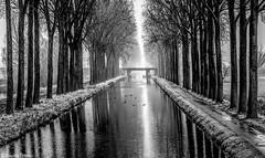 Au fil de l'eau. (musette thierry) Tags: water canal eau musette thierry nikon reflet hdr d800 28300mm vue paysage lumiére falowme new day belgique hainaut