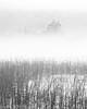 Hidden Castle (evorichie101) Tags: kilchurn castle scotland mist misty reeds