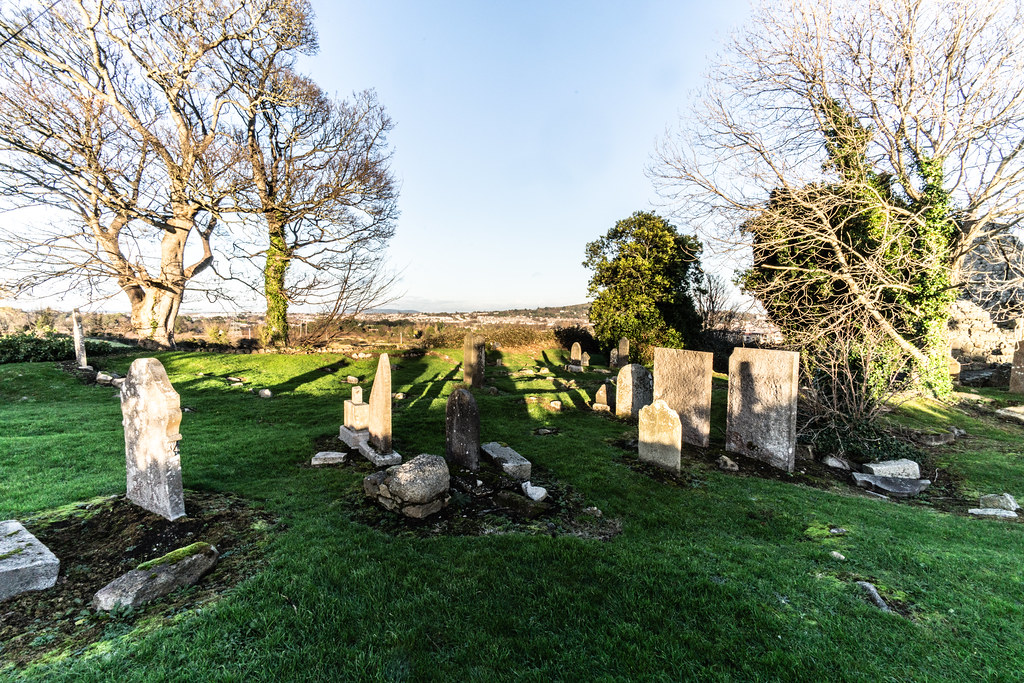 ANCIENT CHURCH AND GRAVEYARD AT TULLY [LAUGHANSTOWN LANE NEAR THE LUAS TRAM STOP]-134607