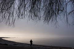 the magic hour (bluechameleon) Tags: sharonwish beach birds bluechameleonphotography branches color colour fog frost landscape man melancholic moody mysteriious mystical ocean rippes rocks seawall secondbeach silhouette sky trees vancouver winter water tree mist ngc