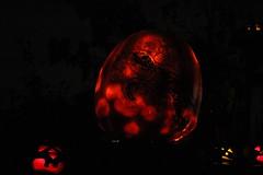IMG_6608 (comtrag) Tags: jackolanterns rogerwilliamszoo rhodeisland halloween pumpkins pumpkincarving