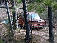 Hiding the past (Dave* Seven One) Tags: overgrown trees woods field abandoned forgotten rusty rust rot rotting rotted dead broken used import bmw 700 bmw700 bmwsaloon 1960s