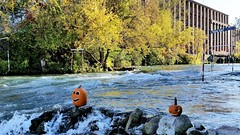 Deux Citrouilles D'Halloween Au Parc D'Eau Vive. 2017 10 18 16:13.49 (Sandbanks Pro) Tags: rivièresaintcharles salaberrydevalleyfield quebec canada river riviere eau water citroille pumpkin halloween parcdeauvive arbre tree nature paysage touristique rafting kayaking kayak ville city