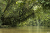 Bienvenue sur les eaux tranquilles de l'Amazonie équatorienne
