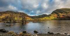 Across Brothers Water to Hartsop and the crags. (steve.gombocz) Tags: nationalpark panorama nikkor digital nature green light clouds nikon nikonusers nikond810 nikoneurope nikoncamera nikonfx nikon140240mmf28 sceneryshooting simplylandscapes cumbria westcumbria colour colours color colourmania natureisbeautiful lakedistrict lakedistrictuk out outandabout outdoors landscapephoto landscapephotograph landscapephotography panoramicphotos panoramicviews reflections reservoir scenery landscapescenes mountains hills crags brotherswater hartsop natureviews lakescene landscapepicture nicepicture nicelandscape flickrlandscapes flickrscenery explorelandscapes explorescenery explorelakes lakes stone pebble ripple