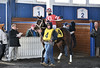 "2017-12-26 (54) r5 Christian Hiraldo on #4 Dance or Stroll (JLeeFleenor) Tags: photos photography maryland md horse jockey جُوكِي ""赛马骑师"" jinete ""競馬騎手"" dżokej jocheu คนขี่ม้าแข่ง jóquei žokej kilparatsastaja rennreiter fantino ""경마 기수"" жокей jokey người horses thoroughbreds equine equestrian cheval cavalo cavallo cavall caballo pferd paard perd hevonen hest hestur cal kon konj beygir capall ceffyl cuddy yarraman faras alogo soos kuda uma pfeerd koin حصان кон 马 häst άλογο סוס घोड़ा 馬 koń лошадь laurelpark marylandraces races outdoors outside winter cold paddock"
