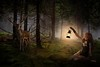 Dark Forest (Tony Holmes2) Tags: forest fog dark woods landscape nature tree spruce pine coniferous foggy green fantasy background mist leaf misty morning blue spooky trees horror weather mystery magic evening halloween ukraine