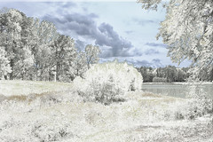 Snow at the Park (Thomas Vasas Photography) Tags: nature landscapes winterscapes snowscapes winter seasons snow frozen scenics clouds wintersky lakes ponds coopercreekpark columbus georgia