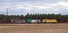 3 locomotoras BB 67400 con 3 libreas diferentes en Laluque (ordunte) Tags: francia france infra fret laslandas landes sncf bb67400 bb67400fret bb67400infra bb67400multiservice multiservice laluque aquitaine aquitania