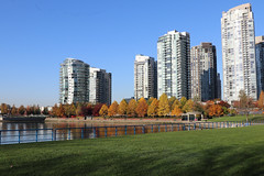 Sunny fall day (¡Carlitos) Tags: norteamerica vancouver bc falsecreek canada agua britishcolumbia northamerica water ca