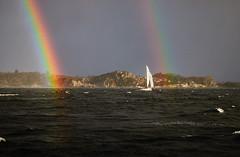 Hoist the Jolly Roger! (Ole Henrik Bach) Tags: seiling sailing karmøy haugesund