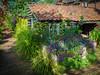 Red House garden shed, Bexleyheath (Bob Radlinski) Tags: bexleyheath greatbritain kent kentalbum nationaltrust redhouse uk williammorris travel england