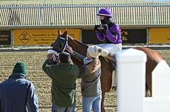 "2017-12-26 (36) r3 Elvis Trujillo on #6 Enterprise Value (JimFleenor) Tags: photos photography maryland md horse jockey جُوكِي ""赛马骑师"" jinete ""競馬騎手"" dżokej jocheu คนขี่ม้าแข่ง jóquei žokej kilparatsastaja rennreiter fantino ""경마 기수"" жокей jokey người horses thoroughbreds equine equestrian cheval cavalo cavallo cavall caballo pferd paard perd hevonen hest hestur cal kon konj beygir capall ceffyl cuddy yarraman faras alogo soos kuda uma pfeerd koin حصان кон 马 häst άλογο סוס घोड़ा 馬 koń лошадь laurelpark marylandraces races outdoors outside winter cold lacey laceygaudet"