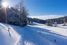 Winterwunderland (Stefan Herberth) Tags: winterwunderland winterwonderland pentada15mmf4limited da15mm limited möggers bodensee austria vorarlberg alpen schnee kaiserwetter starburst