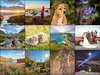 ✧♡✧ Highlights of 2017 ✧♡✧ (Ranveig Marie Photography) Tags: collage newyear 2017 my2017 highlights nature