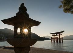 Starburst lantern (calvin.downes) Tags: japan miyajima torii lantern starburst