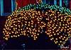 HOLIDAY LIGHTS AROUND THE NEIGHBORHOOD VINCI (Visual Images1 (Thanks for over 4 million views)) Tags: lights holidays vinci