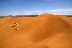 0992 (HerryB) Tags: morocco maroc maghreb nordafrika afrika africa afrique marokko reise voyage travel sonyalpha77 sonyalpha99 tamron alpha sony bechen heribert heribertbechen fotos photos photography herryb 2014 dokumentation documentation