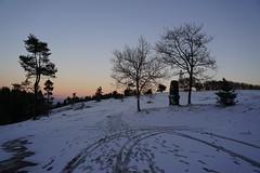 Winterabend auf dem Raßberg (clemensgilles) Tags: deutschland winter eifellandschaft germany eifel