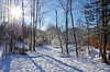 Winter is here! (pentars) Tags: forest winter sunny snow woods trees white bright sky beautiful frost view landscape scenery nature wild cold wide angle pentax k5ii 1224 da