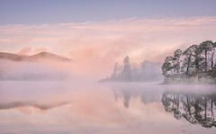 Misty Point (Captain Nikon) Tags: derwentwater keswick cumbria lakedistrict thelakedistrictnationalpark thelakes northwest england greatbritain catbells mountains fells lake island reflections misty mist atmospheric moody pastels landscapephotography landscapes