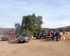 002 Registration At The Peppertree (saschmitz_earthlink_net) Tags: 2018 california orienteering vasquezrocks aguadulce losangelescounty laoc losangelesorienteeringclub