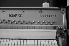 Yamaha PEC-B1 - 02 Aug 2017 - 16 (florentgold) Tags: florent glod floglod florentglod lëtzebuerg lëtzebuerger lëtzebuergesch luxemburg luxemburger luxembourgeois luxembourgeoise luxembourgeoises luxembourg letzebuerg grandduchy grandduché grossherzogtum 2016 august août piano klavier yamaha pec b2 b2e music gear musek musik musikinstrument instrument
