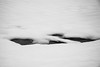 Snow scene (HarQ Photography) Tags: monochrome blackandwhite nature fujifilm s5pro sigma 18125mm landscape