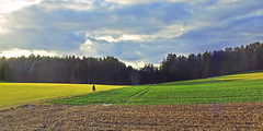 Landscape with rider (rotraud_71) Tags: germany bavaria oberpfalz bayerwald landscape fields forest sky clouds rider winter