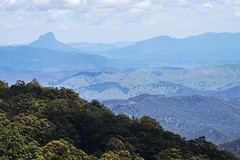 Trees and Mountains (Geoffsnaps) Tags: nikond810 nikon d810 fx nikkor 200mm ed gitzogm5541carbonmonopod gitzo gm5541 carbon monopod manfrotto300npanoramichead manfrotto 300n panoramic head trees bush oreillys lamingtonnationalpark greenmountain queensland australia nikonnikkor200500mmf56eedafs 200500mm f56e e afs
