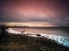 Newton Shore (stephen cosh) Tags: ayr ayrshire hasselbladx1d hasselbladxcd30mm landscape mediumformat scotland seascape stephencosh