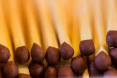 Matchsticks (G_HOWDEN) Tags: macromondays sticks