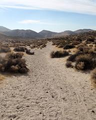 023 Looking Down The Red Cliff Trail (saschmitz_earthlink_net) Tags: 2017 california orienteering redrockcanyon statepark laoc losangelesorienteeringclub mojavedesert desert kerncounty elpasorange