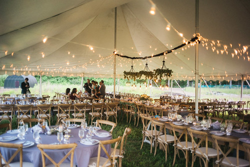 "Bisto Lighting Tent Wedding • <a style=""font-size:0.8em;"" href=""http://www.flickr.com/photos/81396050@N06/39198659251/"" target=""_blank"">View on Flickr</a>"