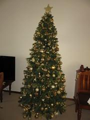Merry Xmas Everyone! (RS 1990) Tags: christmas tree gold golden ornaments decos australia aussie australian xmas december 25th 2017 monday