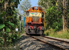 Emerging from the teak forest!! (Gautham Karthik) Tags: indianrailways india kerala nilambur shoranur passengertrain teak forest curve trainspotting railroad diesellocomotive ernakulamlocoshed erswdm3a