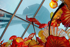In the Shadow of the Space Needle (Mr.LeeCP) Tags: red yellow seattle flowers orange