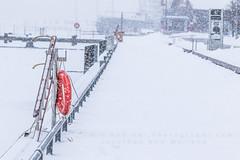 It's cold outside! (HisPhotographs.com) Tags: downtown snow toronto winter harbourfront city white whiteout lake ontario dock pathway boardwalk orange lifepreserverring ladder snowing bokeh ship