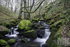 Shipley Glen Stream (M J Small Photography) Tags: canon 7d yorkshire bradford shipley winter uk woods forest sigma 1020mm long exposure stream water tree river