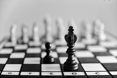 _ZA11358bn (zalo_astur) Tags: ejedrez chess tablero piezas dificultad imposible