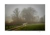 Gentle landscape in the fog (Der Zeit die Augenblicke stehlen) Tags: bäume deutschland eos700d hth56 holsteinischeschweiz impressionen landscape landschaft plön schleswigholstein thomashesse winter